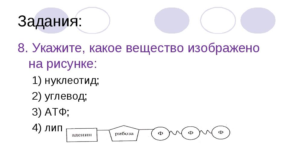 Задания: 8. Укажите, какое вещество изображено на рисунке: 1) нуклеотид; 2) у...