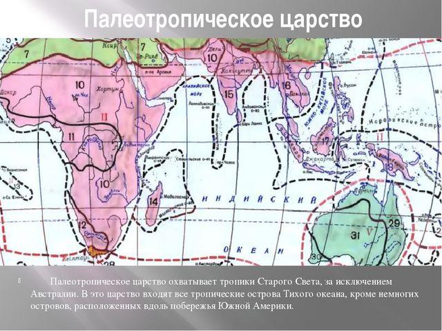Палеотропическое царство Палеотропическое царство охватывает тропики...