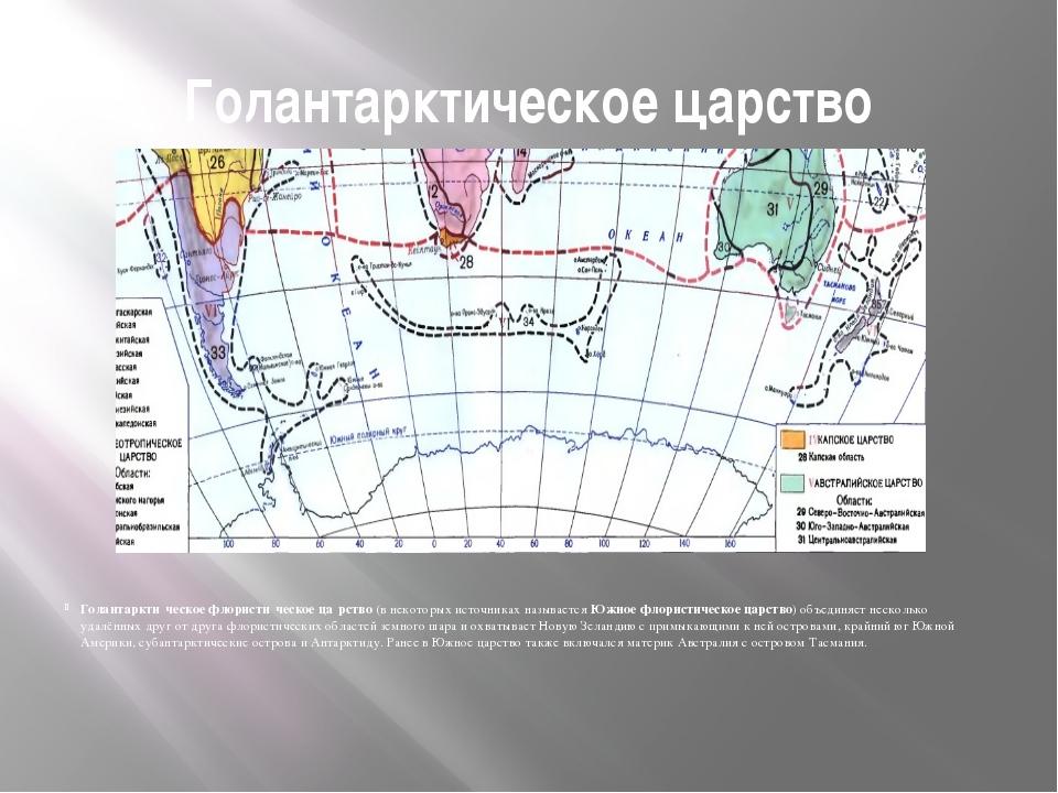 Голантарктическое царство Голантаркти́ческое флористи́ческое ца́рство(в неко...