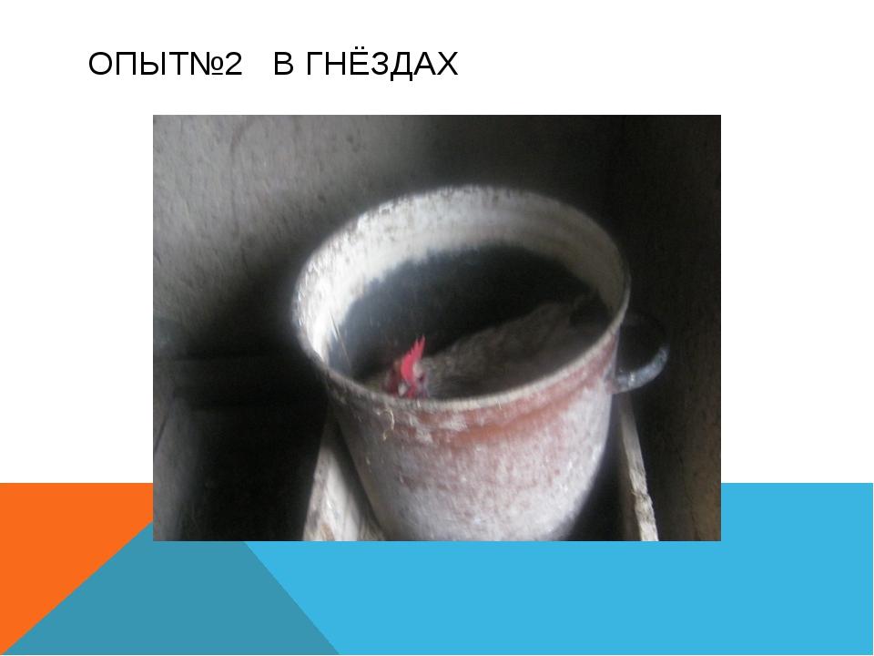 ОПЫТ№2 В ГНЁЗДАХ