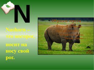 Nashorn – это носорог, носит на носу свой рог. N