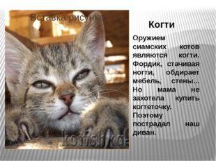 Когти Оружием сиамских котов являются когти. Фордик, стачивая ногти, обдирает