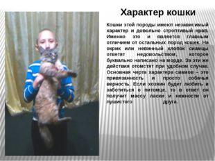 Характер кошки Кошки этой породы имеют независимый характер и довольно стропт