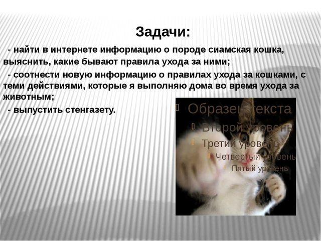 Задачи: - найти в интернете информацию о породе сиамская кошка, выяснить, ка...