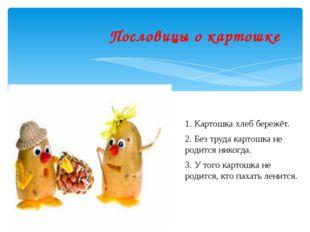 Пословицы о картошке 1. Картошка хлеб бережёт. 2. Без труда картошка не роди