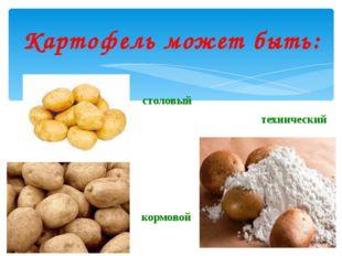 Картофель может быть: столовый кормовой технический