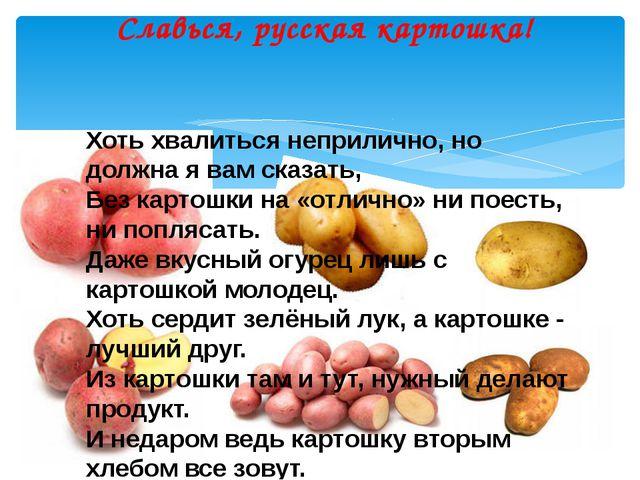 Славься, русская картошка! Хоть хвалиться неприлично, но должна я вам сказать...