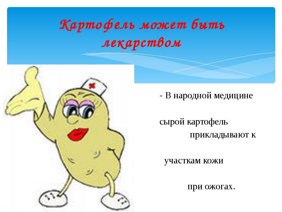 - В народной медицине сырой картофель прикладывают к участкам кожи при ожогах...