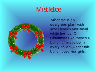 Мistletoe Мistletoe is an evergreen plant with small leaves and small white b