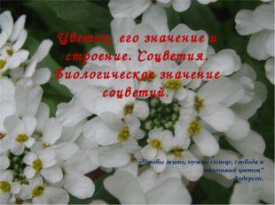 Цветок, его значение и строение. Соцветия. Биологическое значение соцветий. «