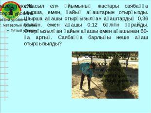 «Жасыл ел» ұйымының жастары саябаққа шырша, емен, қайың ағаштарын отырғызды.