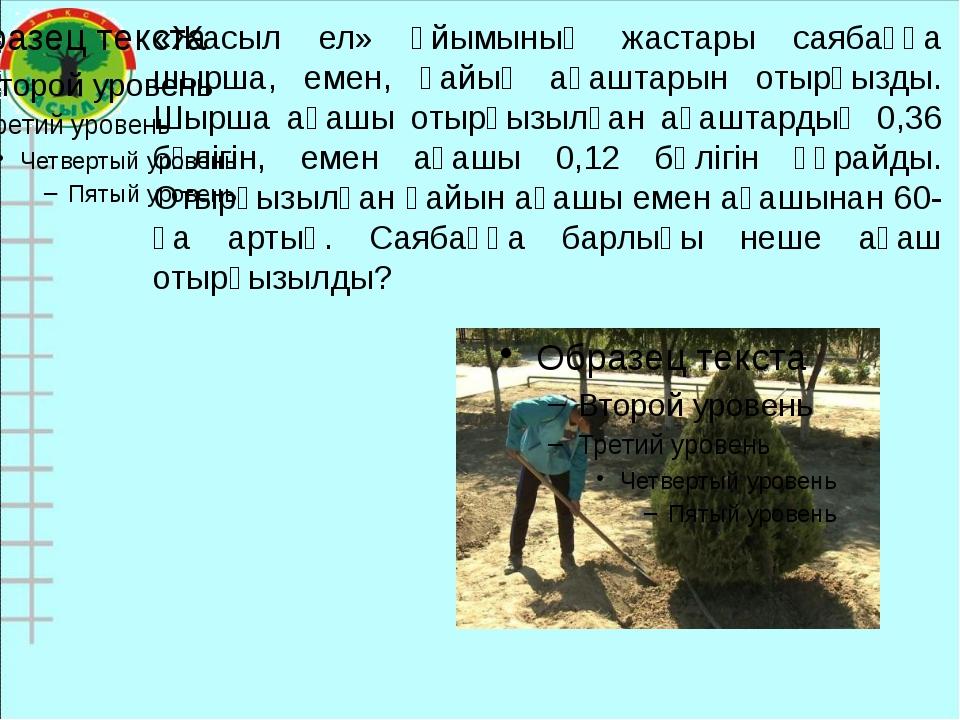 «Жасыл ел» ұйымының жастары саябаққа шырша, емен, қайың ағаштарын отырғызды....