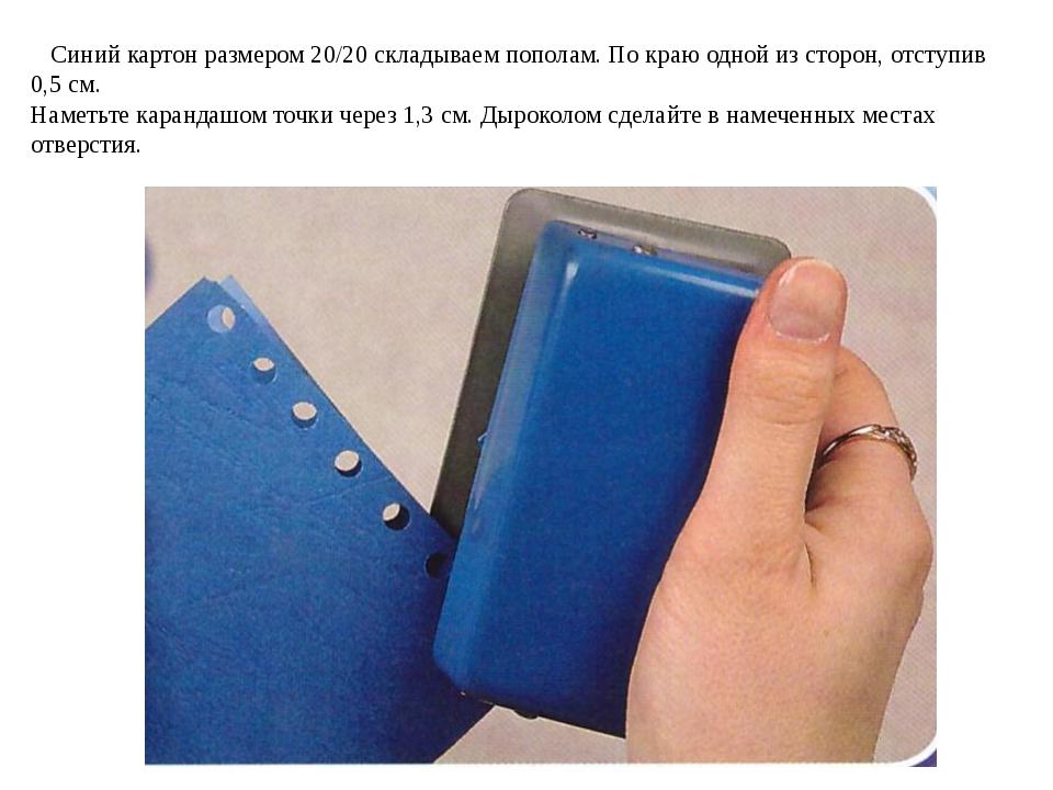 Синий картон размером 20/20 складываем пополам. По краю одной из сторон, отс...