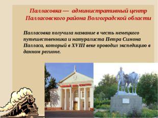 Палласовка — административный центр Палласовского района Волгоградской област
