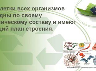 2. Клетки всех организмов сходны по своему химическому составу и имеют общий