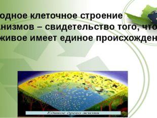 5.Сходное клеточное строение организмов – свидетельство того, что все живое и