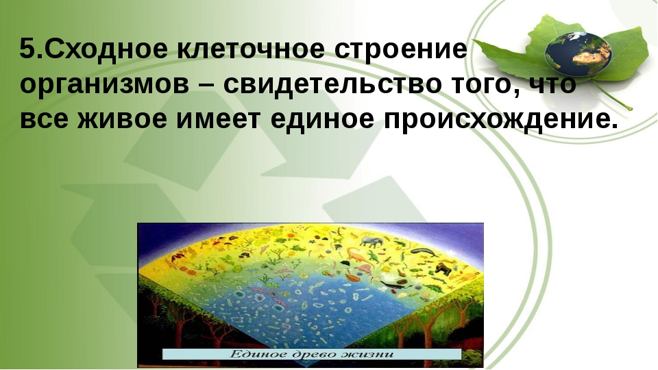 5.Сходное клеточное строение организмов – свидетельство того, что все живое и...