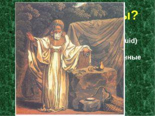 Кто такие друиды? Друи́ды (галльское druidae, древнеирландское druí, мн.ч. dr