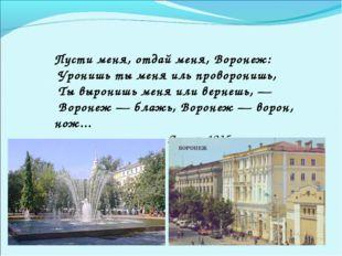 Пусти меня, отдай меня, Воронеж: Уронишь ты меня иль проворонишь, Ты вырони