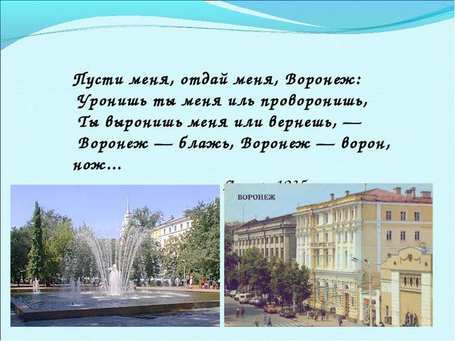 Пусти меня, отдай меня, Воронеж: Уронишь ты меня иль проворонишь, Ты вырони...
