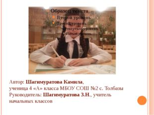 Автор: Шагимуратова Камила, ученица 4 «А» класса МБОУ СОШ №2 с. Толбазы Руко