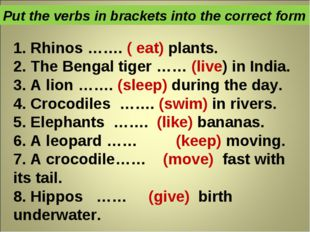1. Rhinos ……. ( eat) plants. 2. The Bengal tiger …… (live) in India. 3. A lio