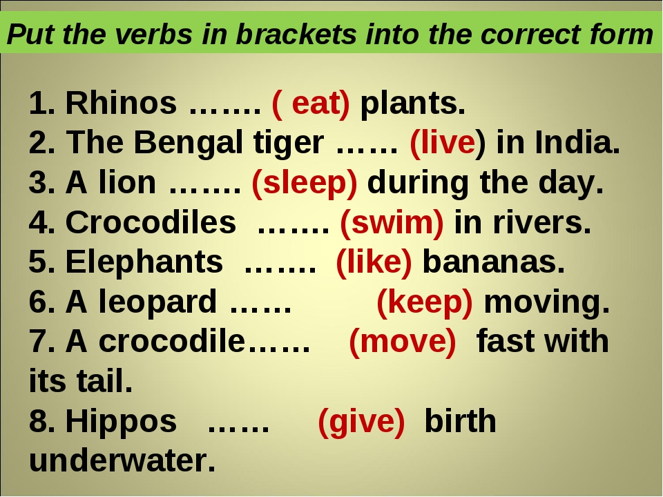 1. Rhinos ……. ( eat) plants. 2. The Bengal tiger …… (live) in India. 3. A lio...