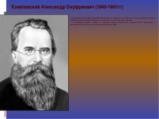 Исследуя зародышевое развитие ланцетника, Ковалевский А. О. обнаружил, как во