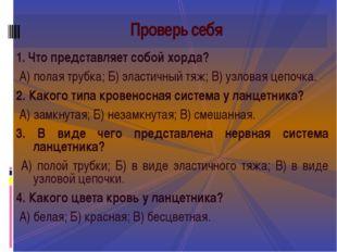 1. Что представляет собой хорда? А) полая трубка; Б) эластичный тяж; В) узло