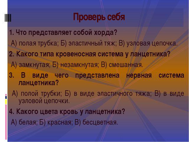 1. Что представляет собой хорда? А) полая трубка; Б) эластичный тяж; В) узло...