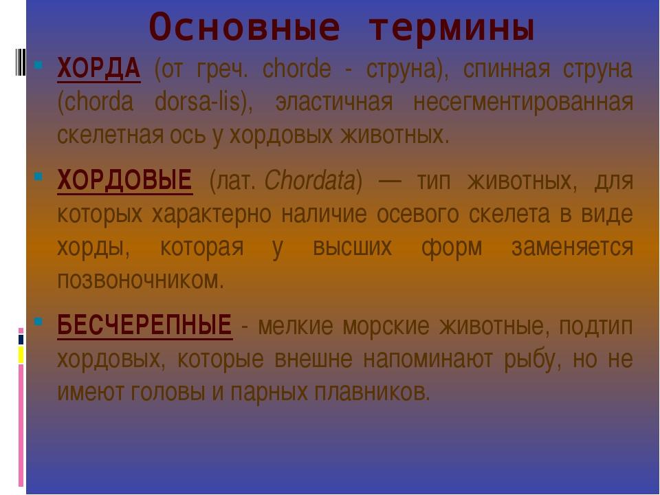 Основные термины ХОРДА (от греч. chordе - струна), спинная струна (chorda dor...