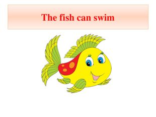 The fish can swim