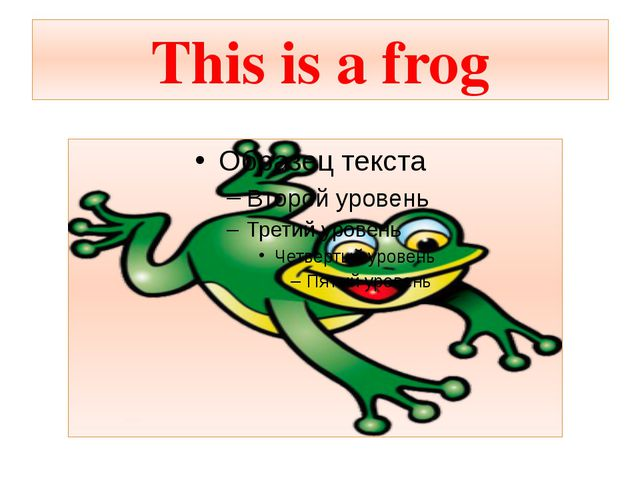 This is a frog