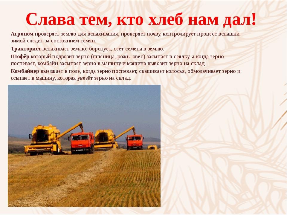 Слава тем, кто хлеб нам дал! Агрономпроверяет землю для вспахивания, проверя...