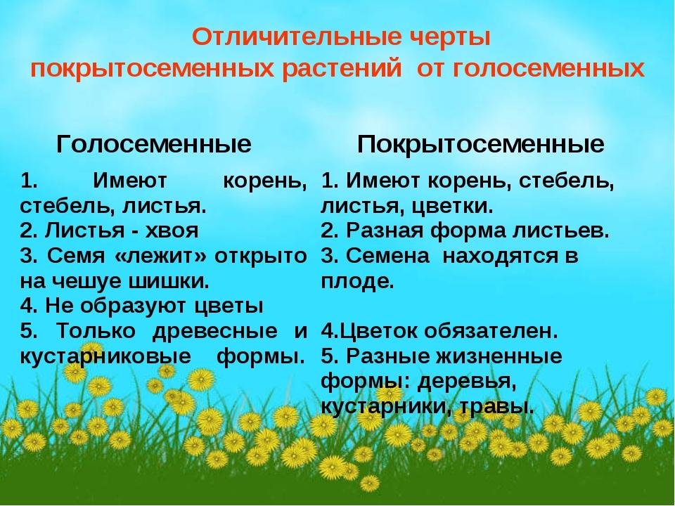 Отличительные черты покрытосеменных растений от голосеменных Голосеменные П...