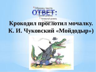 Рахимова А.Е., МАОУ СОШ № 8 Крокодил проглотил мочалку. К. И. Чуковский «Мойд