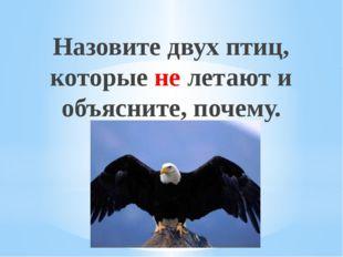 Назовите двух птиц, которые не летают и объясните, почему. Рахимова А.Е., МАО