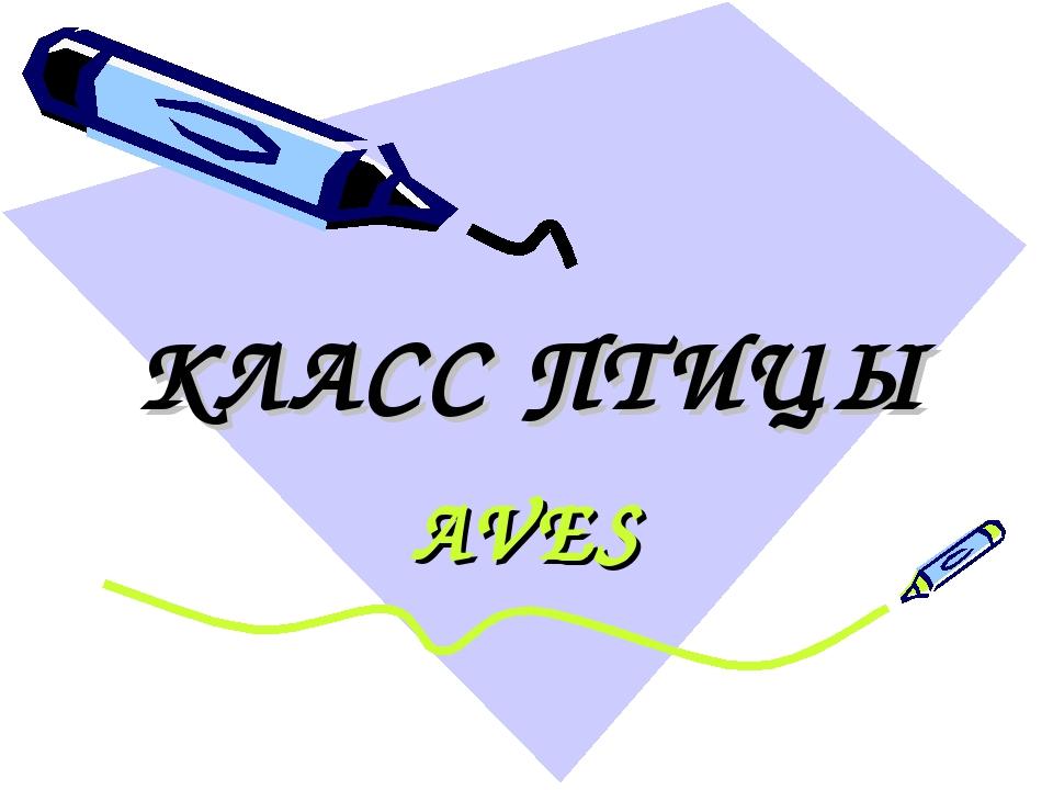 КЛАСС ПТИЦЫ AVES
