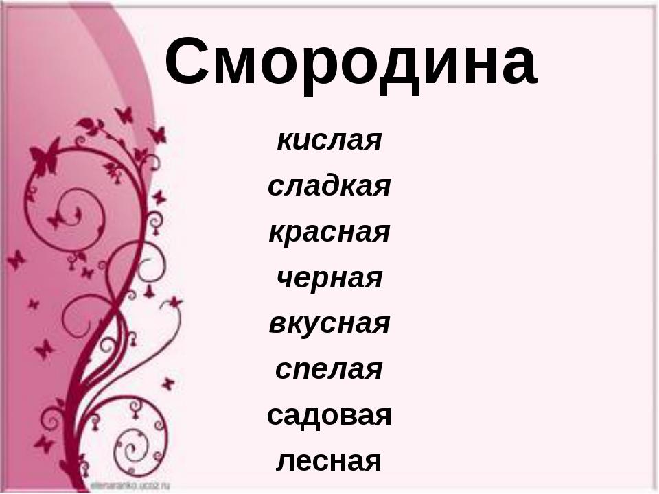 кислая сладкая красная черная вкусная спелая садовая лесная Смородина