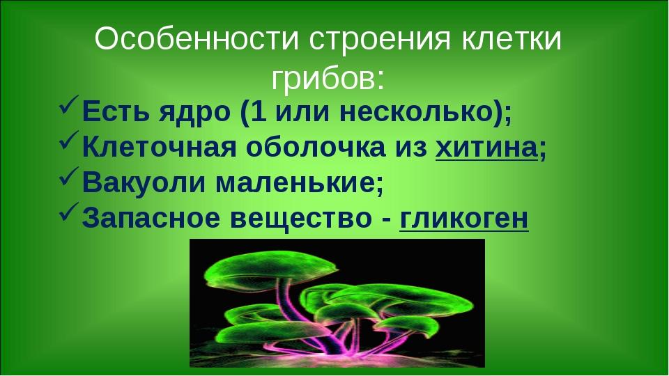 Есть ядро (1 или несколько); Клеточная оболочка из хитина; Вакуоли маленькие;...