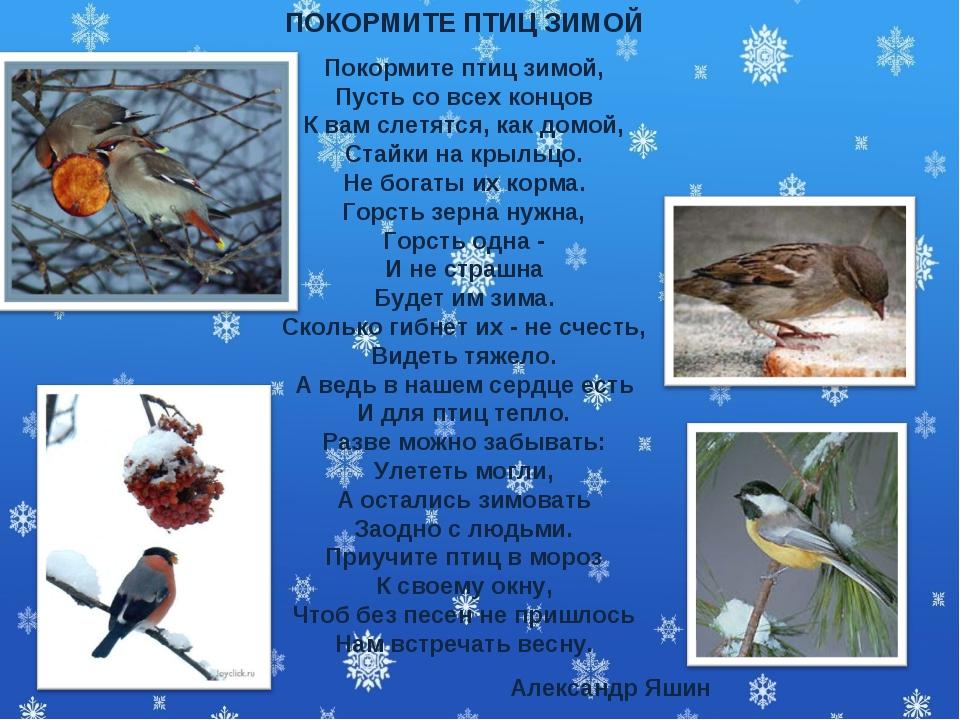 ПОКОРМИТЕ ПТИЦ ЗИМОЙ Покормите птиц зимой, Пусть со всех концов К вам слетятс...