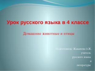 Урок русского языка в 4 классе Домашние животные и птицы Подготовила: Жаканов