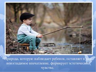 Природа, которую наблюдает ребенок, оставляет в нем неизгладимое впечатление,
