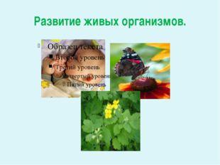 Развитие живых организмов.