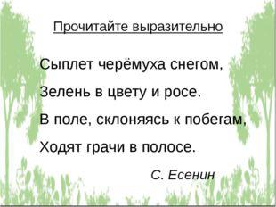 Прочитайте выразительно Сыплет черёмуха снегом, Зелень в цвету и росе. В поле