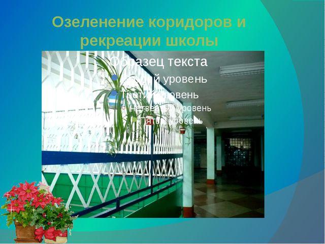 Озеленение коридоров и рекреации школы