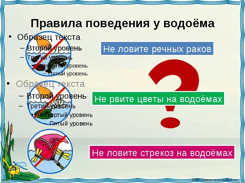 Правила поведения у водоёма Не ловите речных раков Не рвите цветы на водоёмах...