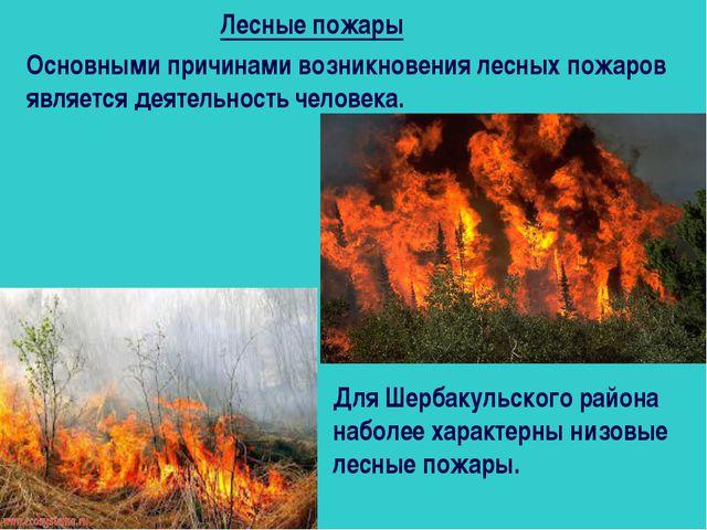 Лесные пожары Основными причинами возникновения лесных пожаров является деяте...