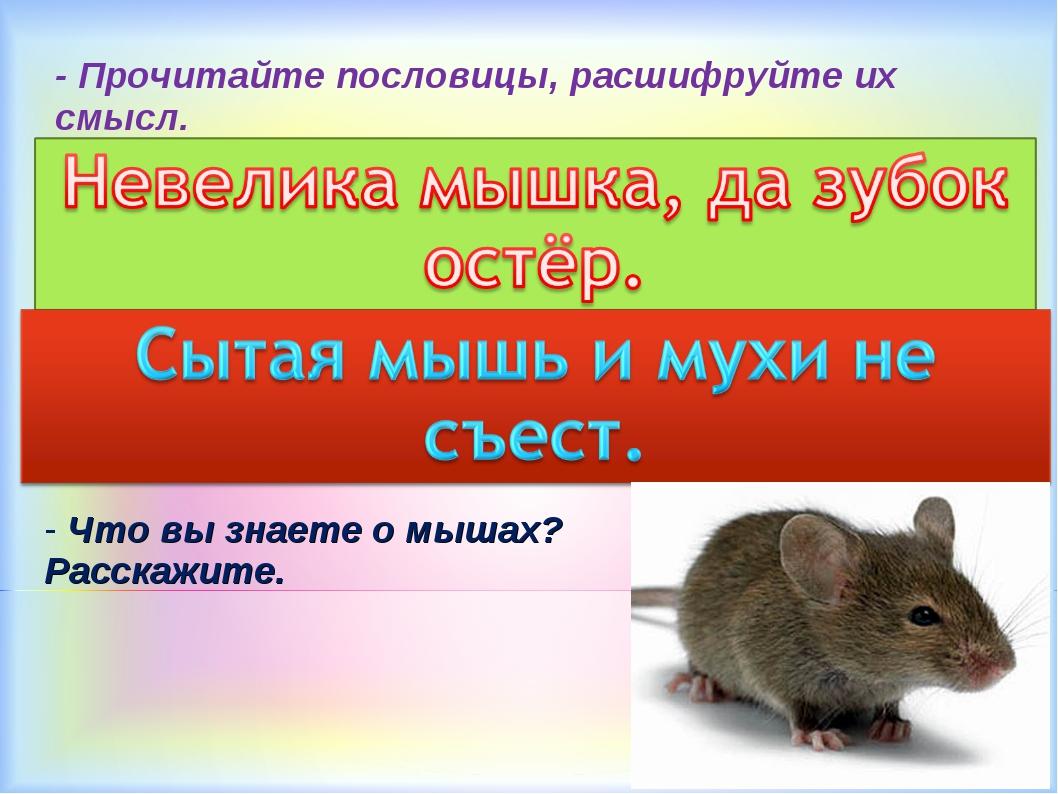 - Прочитайте пословицы, расшифруйте их смысл. - Что вы знаете о мышах? Расска...