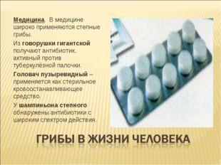 Медицина. В медицине широко применяются степные грибы. Из говорушки гигантско